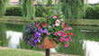 Participez au Concours Maisons Fleuries de Lherm